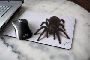 Рисунок 3д в виде паука