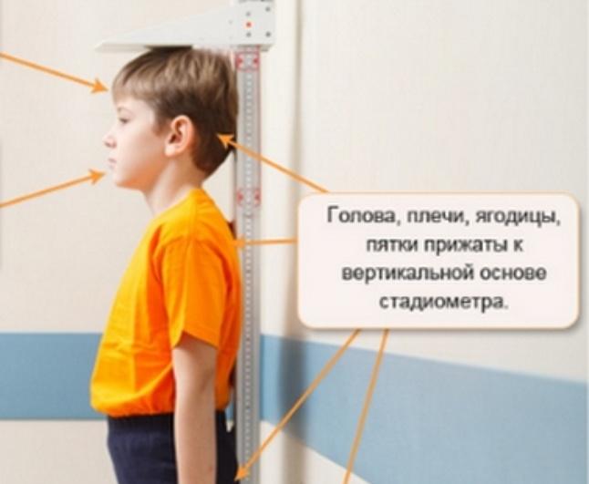 Измерение роста у ребенка