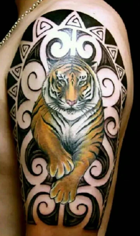 Тигр на плече