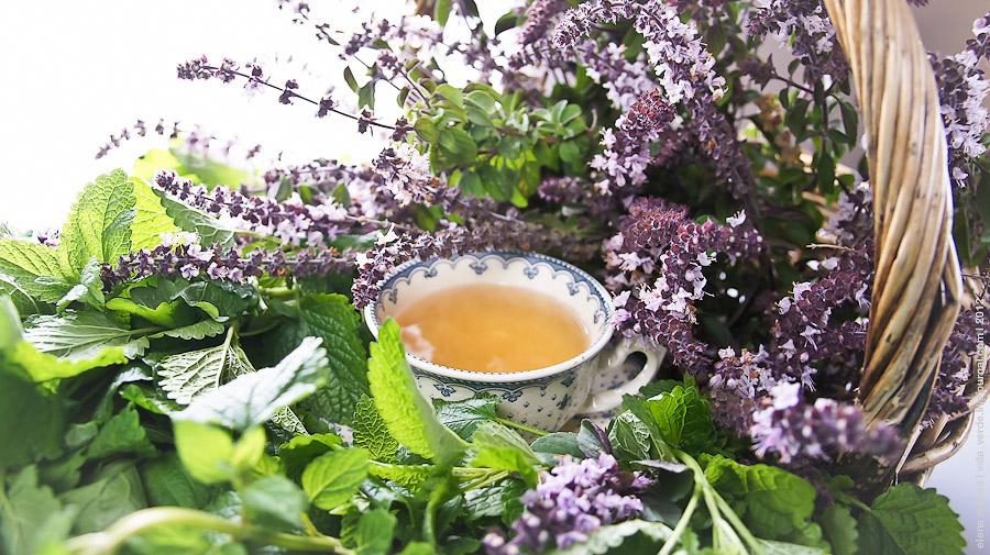 Пить травяной чай