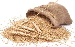 Зерно и мешок
