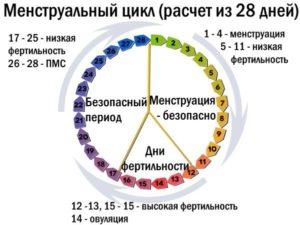Как считать цикл 6