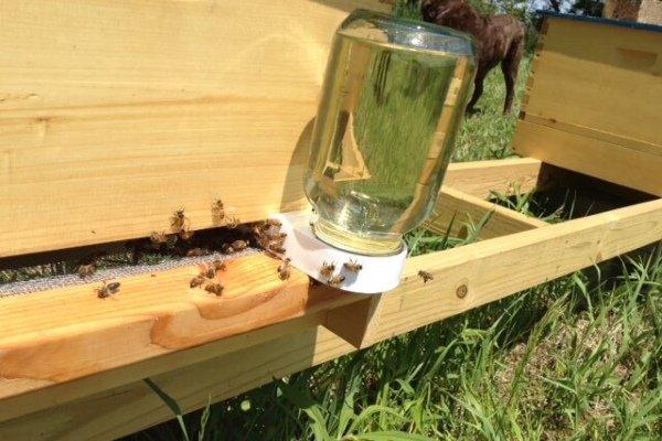 Как сделать лепешку для подкормки пчел